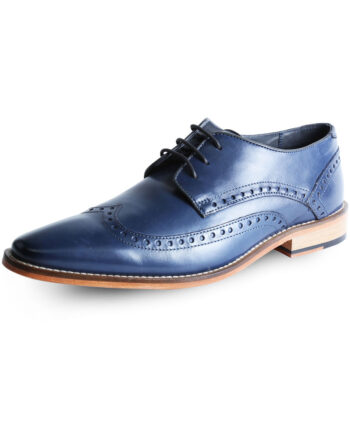 Blue Shoe by Goodwin Smith