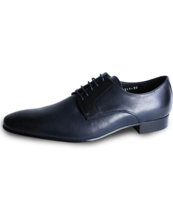 Wilvorst Navy Shoe