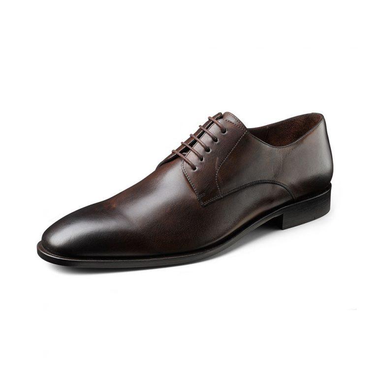 Brown shoe Wilvorst 2016_448314-60_Model-290