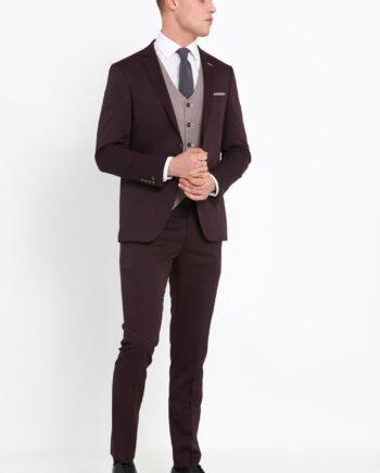 Louis Wine 3 Piece Suit
