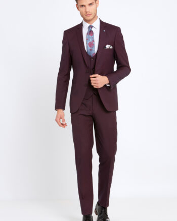 Emmet Wine 3 Piece Suit